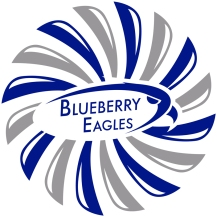 Logon ja frisbeegolkiekon painatus